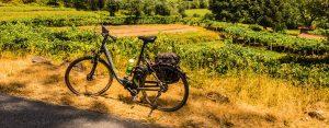 E-Bike Ratgeber - E-Bike Reisen mit Belvelo