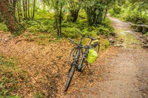 E-Bike Reisen entlang des Jakobweges - die Pedelecs im dichtem Wald