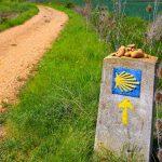 E-Velo Reisen entlang des Jakobweges - das Symbol der Jakobsmuschel zeigt uns den Weg