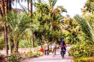 E-Bike-Reisen in Marokko - Radfahren in der Oase unweit von Casablanca