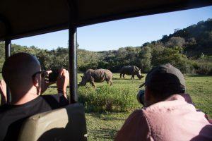 E-Bike-Rundreise in Südafrika - Nashörner auf Safari