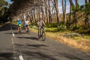 E-Bike-Reise in Südafrika - Radfahren in der Nähe von Kapstadt