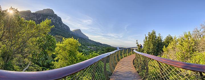 Südafrika Radreise mit dem E-Velo - Botanischer Garten Kirstenbosch