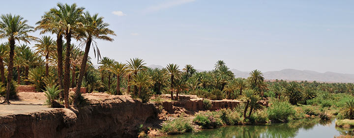 Zagora Oasen Stadt in Marokko