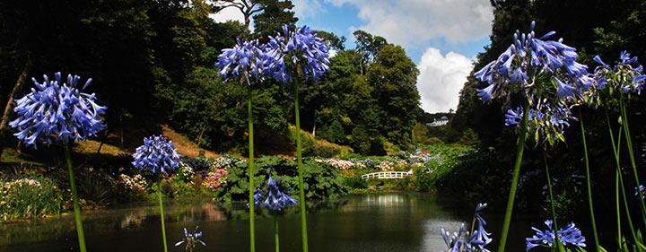 Trebah Garden - Sehenswürdigkeiten in Cornwall