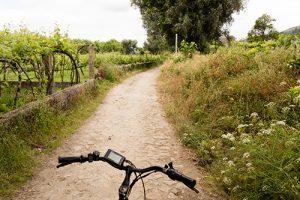E-Bike-Touren mit Belvelo