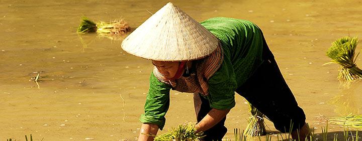 Vietnam Sehenswürdigkeiten - Belvelo Ebike Reise durch Vietnam