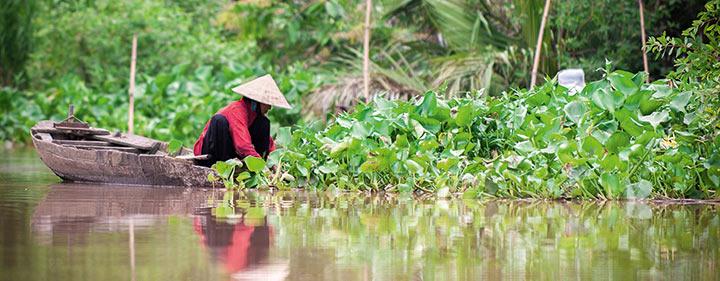 Vietnam Sehenswürdigkeiten - Mekong Delta und seine schwimmenden Märkte