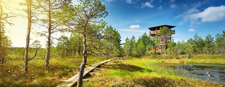 Baltikum - Sehenswürdigkeiten - Lahemaa Nationalpark