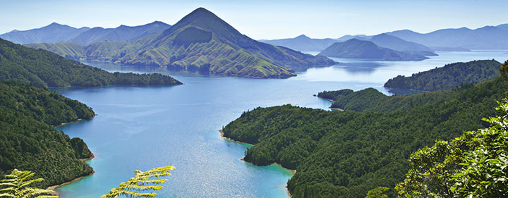 Neuseeland Reise - Küstenlinie Marlborough Sounds