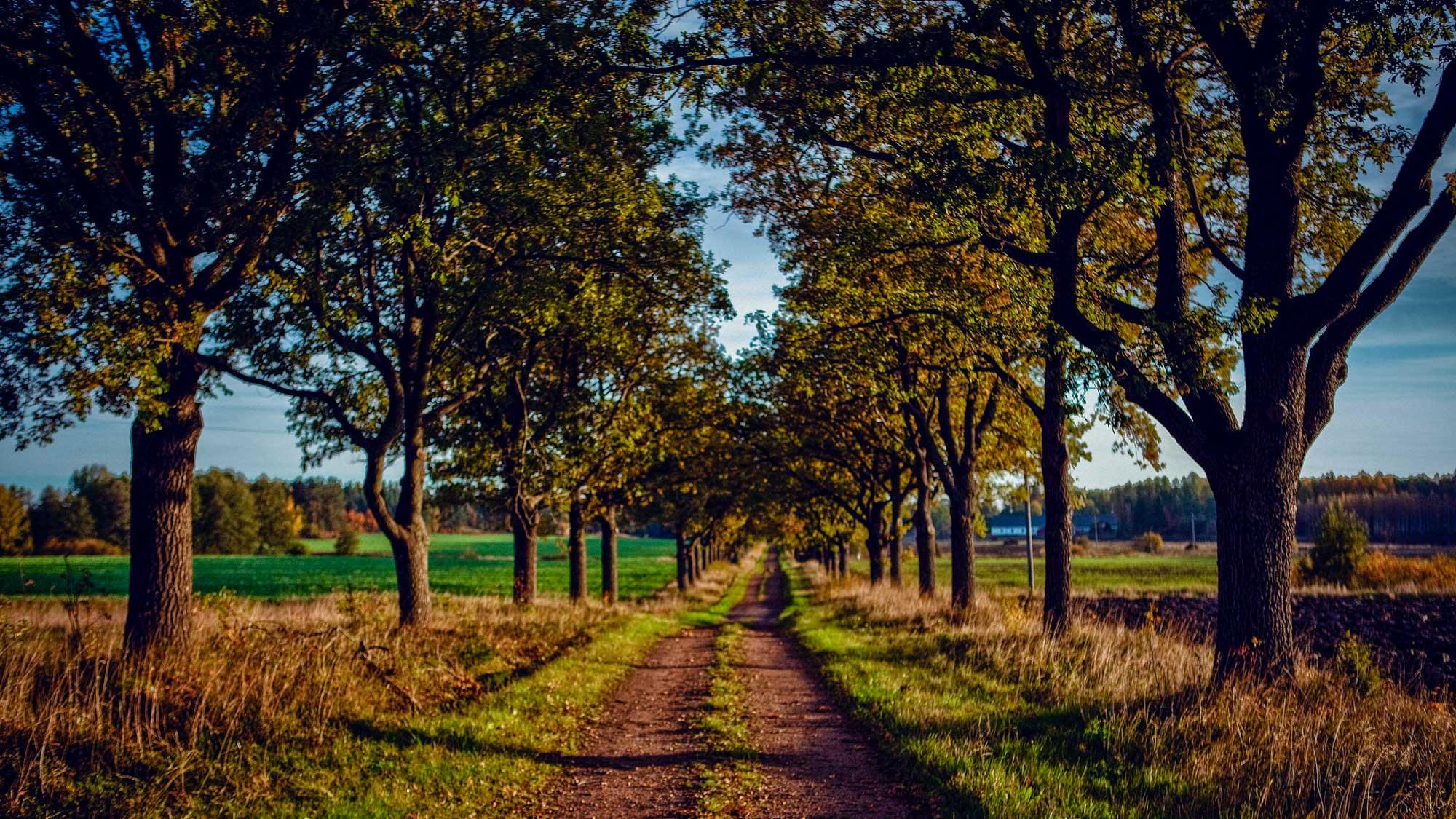 Finnland Urlaub - Kotka Landschaft - E Bike Reise