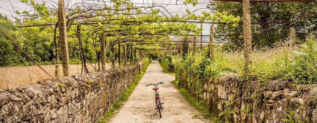 Radreisen mit Belvelo